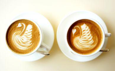 life cafe freetoedit