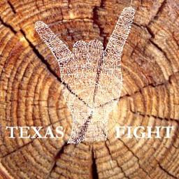 texaslonghorns freetoedit