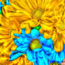 flowerbouquet acmemarket fridayevening summer2016 bensalempa