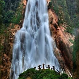 mex chiapas nature wood water freetoedit