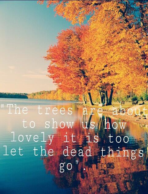 #wapatumnvibes #leave #leafs #cute #qoutes #picme #lol #autumn #dead #things