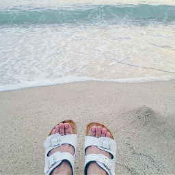 beach sea happy