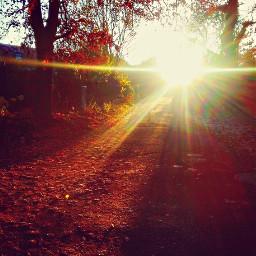 freetoedit sunrise sun fall auttum