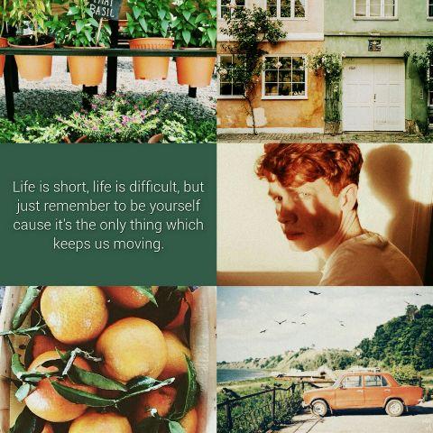 #aesthetic,#green,#orange